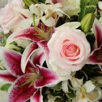 fleurs-horticulture